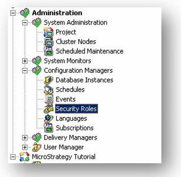 Administration Security Role