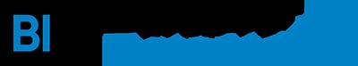 Business Data Master Logo